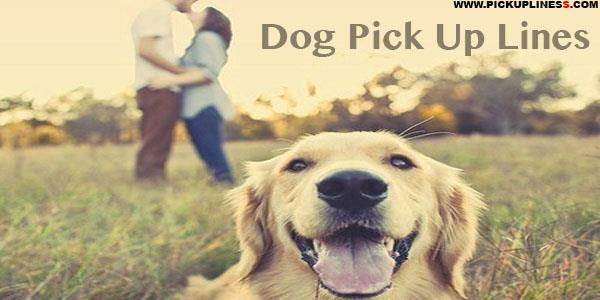 Dog Pick up Lines